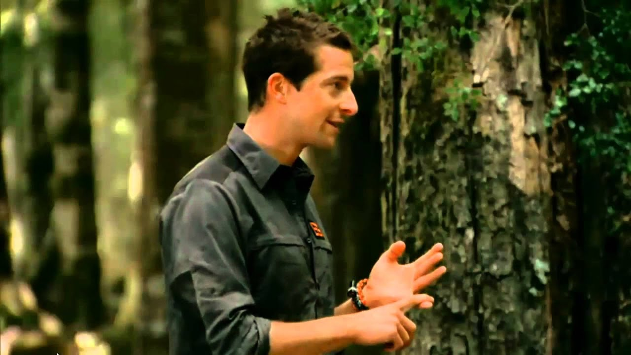 bear grylls deutsch