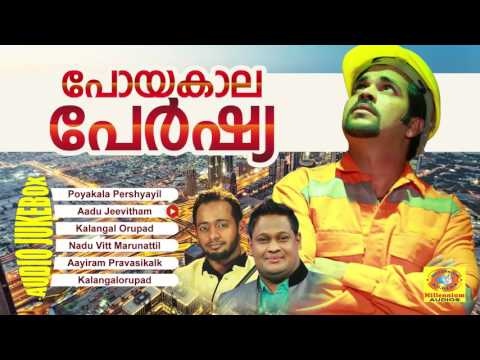 Poyakaala Pershya | പോയകാല പേർഷ്യ | Mappila Pravasi Songs | Latest Mappila Album Songs
