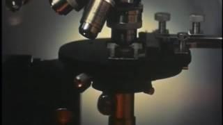 結核菌と化学薬剤-ミクロの世界 第2部-東京シネマ製作