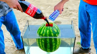 EXPERIMENT Watermelon VS CocaC…