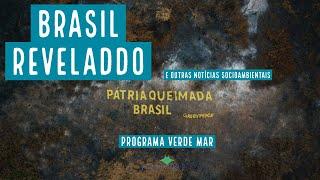Programa Verde Mar AO VIVO - Notícias socioambientais - Quarta, 18/08/21