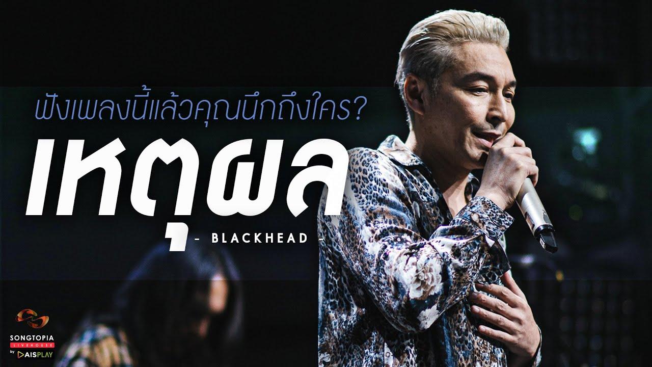 เหตุผล - Blackhead   ฟังเพลงนี้แล้วคุณนึกถึงใคร?   Songtopia Livehouse
