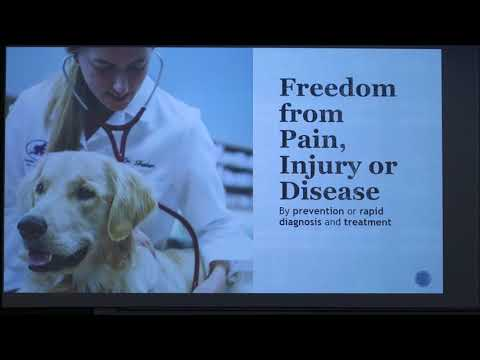 The Five Freedoms In Animal Welfare (2018)