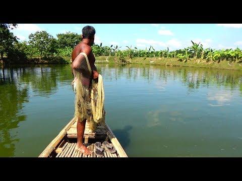 Throw Net Fishing on Boat | Unbelievable net fishing | fishing with a cast net