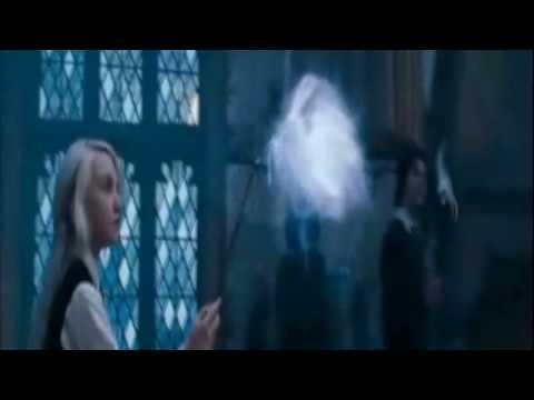 AMV Hazel Fernandes  Number e Harry Potter ~ Fan Made