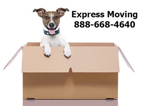 Flatrate Movers Deerfield Beach FL - Yelp Movers in Deerfield Beach FL Flatrate Movers