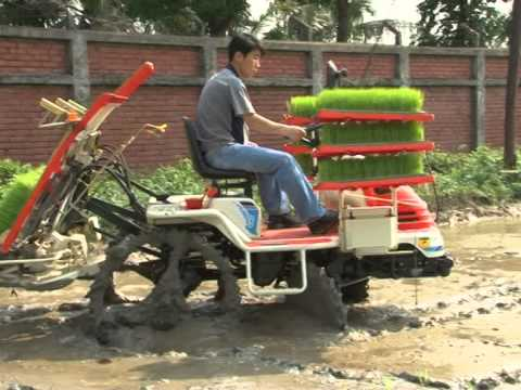 Transplanter & Combine by ACI Motors Limited (Bangladesh)