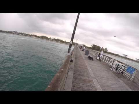 Dania Pier Fishing