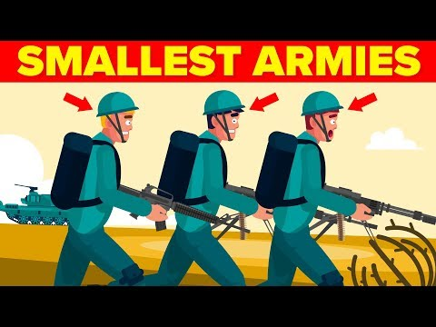 The 15 Smallest Militaries In The World