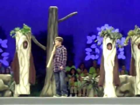 Wood Cutter Cut Song - Woody (Kacey Hayner)