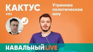 Кактус #111. Гость — Алексей Шевцов, ITPEDIA