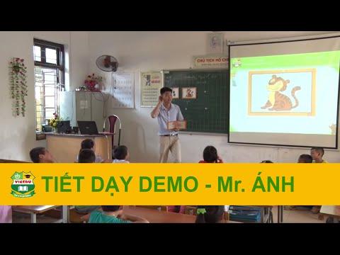 Tiết dạy Demo Tiểu học - Mr. Ánh - Giáo viên Việt Nam