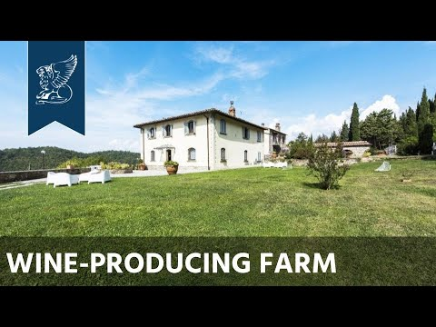 Old wine-producing farm for sale in Chianti | Tuscany, Italy - Ref. 4219