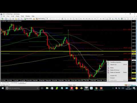 Live Commodity and Analysis with The Gold & Silver Club 01/12