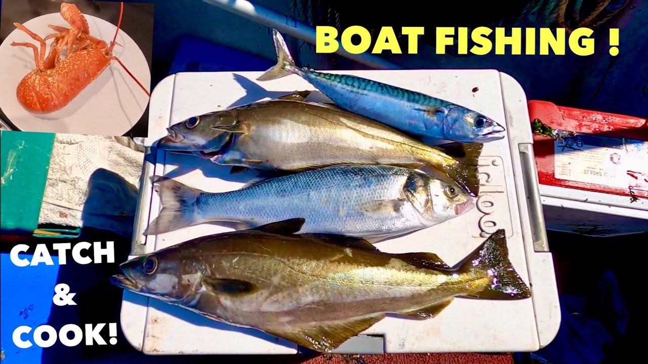 BOAT FISHING With DAD - Pollack , Bass , Mackerel , LOBSTER POTS , Catch & Cook LOBSTER !