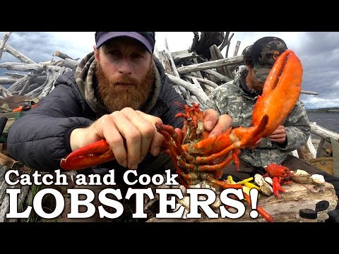 Primitive Cooking Lobsters in Seaweed! | Catch and Cook