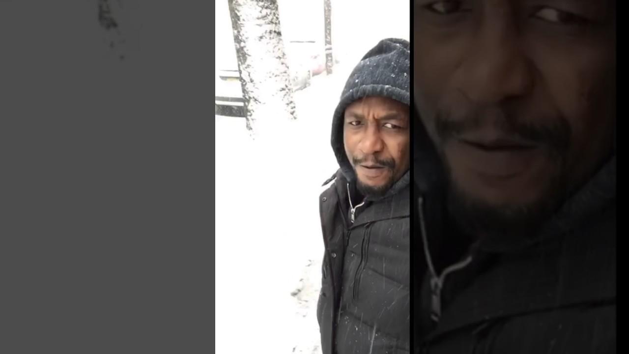 Fa Ne 10 Legendary Palago Mufasa is lyk dat Snow bi 3d3