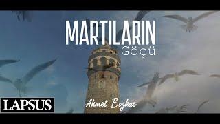 MARTILARIN GÖÇÜ | Ahmet Bozkuş