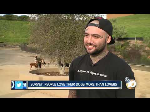 MORNING NEWS - Study Shows Some People Love Their Dogs More Than Their Lovers!