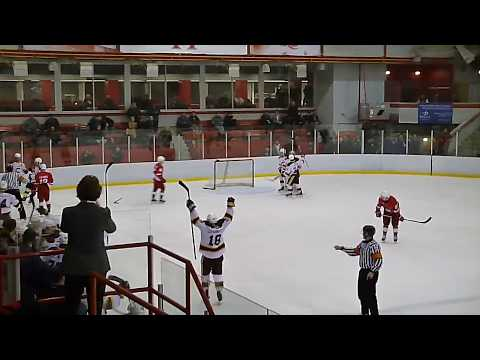 Concordia Stingers Beat McGill 2-1 To Win The OUA East Quarter-final Series 2 Games To 1  2/16/20