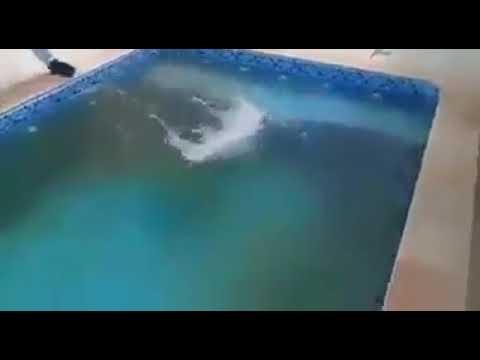 In pochi secondi l 39 acqua della piscina diventa limpidissima youtube - Acqua orecchie piscina ...
