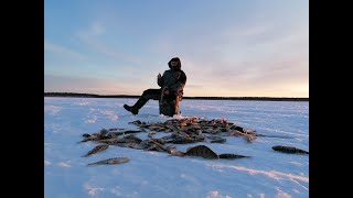 Зимняя рыбалка на Печоре