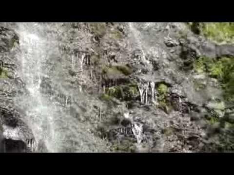 Manoa Falls (Hawaii)