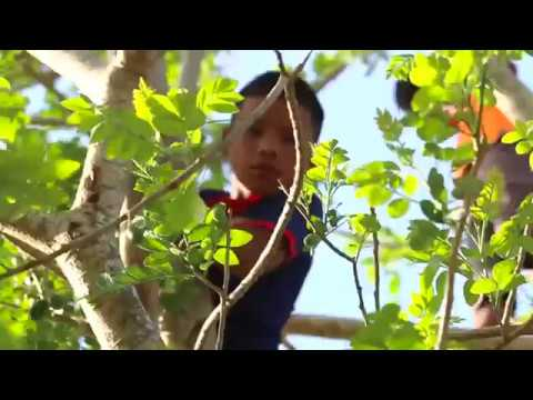 Embera: A Journey into Panama's Darien Province