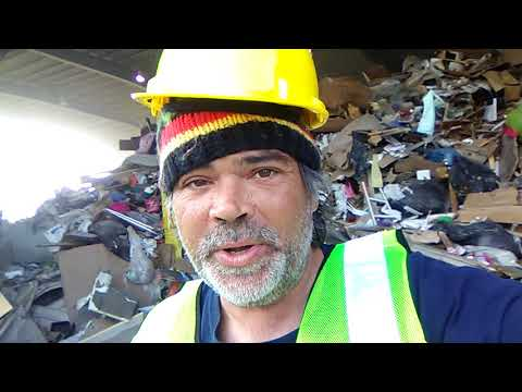 Making money with Frankie silly safety gear