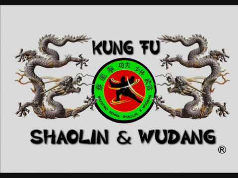 Wudang Kungfu Ji Ben Quan 武当功夫基本拳  Basic Fist Set by ShiFu Paty Lee