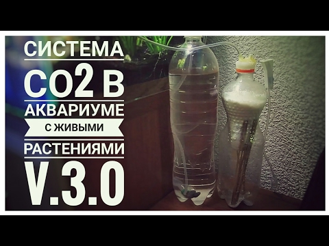Система СО2 в аквариуме с живыми растениями v.3.0