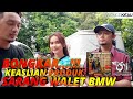Bongkar Keaslian Produk Sarang Walet Bmw Master Indonesia  Mp3 - Mp4 Download
