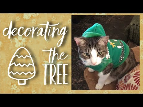 Tree Decorating With Cute Kittens & Kids