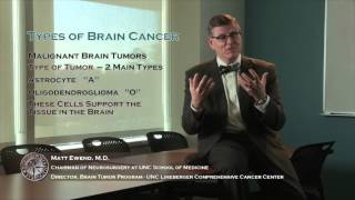 Brain Tumor Types 1