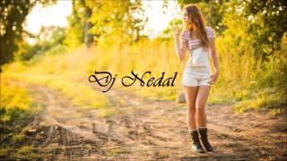 I M Coming Home Skylar Grey Dj Nedal Remix