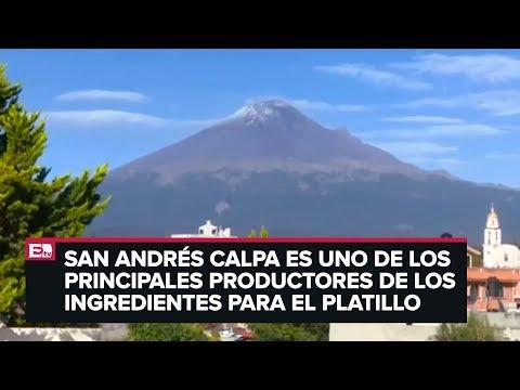Inicia temporada de chiles en nogada en Puebla