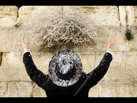 MUSSAR Pirkei Avot (56) Is Your Emunah Enough To Survive Suffering
