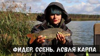 ОСЕНЬ, ЛОВЛЯ КАРПА на ФИДЕР. Рыбалка по холодной воде #129