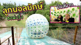 พาทีมงานเล่นลูกบอลยักษ์-ครั้งแรก-กลิ้งลงจากที่สูง-10-เมตร-classic-nu