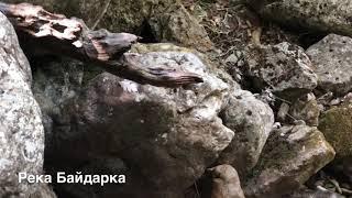 Крым КОТОРОГО БОЛЬШЕ НЕТ