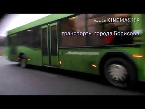 Автобус маз 104 против воды