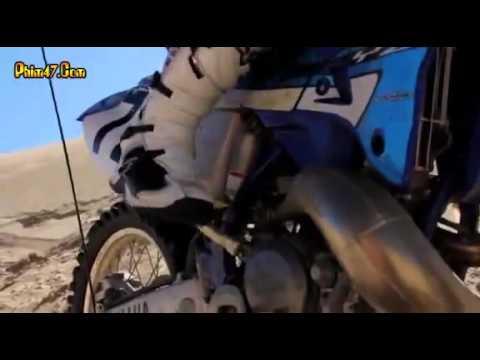 Xem Phim Cá Mập Cát Tập 1   ca map cat Tap 1   Sand Sharks 2011