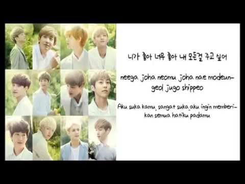 EXO - I Like You/ Joha Joha Lyric (Han+Rom+Indo)