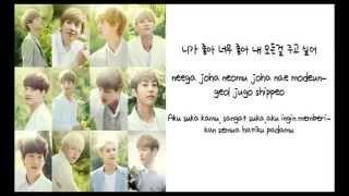 EXO - I Like You/ Joha Joha Lyric (Han+Rom+Indo)