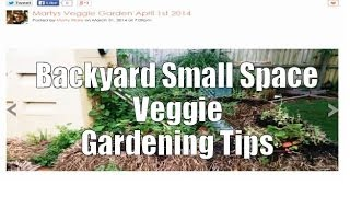 Backyard Small Space Vegetable Gardening Tips With Marty Ware Plus Updates