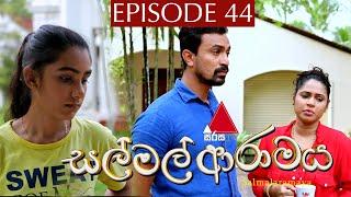 සල් මල් ආරාමය | Sal Mal Aramaya | Episode 44 | Sirasa TV Thumbnail