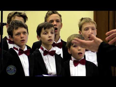 Журавли - Cranes - Moscow Boys' Choir DEBUT
