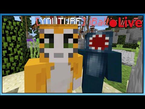 Minecraft - Bed Wars W/Squid - 🔴 Live
