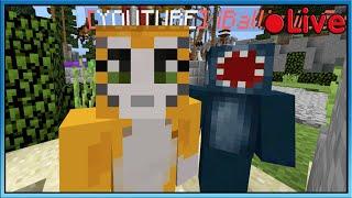 Minecraft - Bed Wars W/Squid - ???? Live