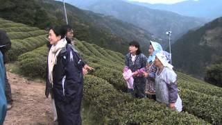 NHK徳島放送局の80周年を記念して制作されたドラマ『狸な家族』の...